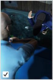 акварс